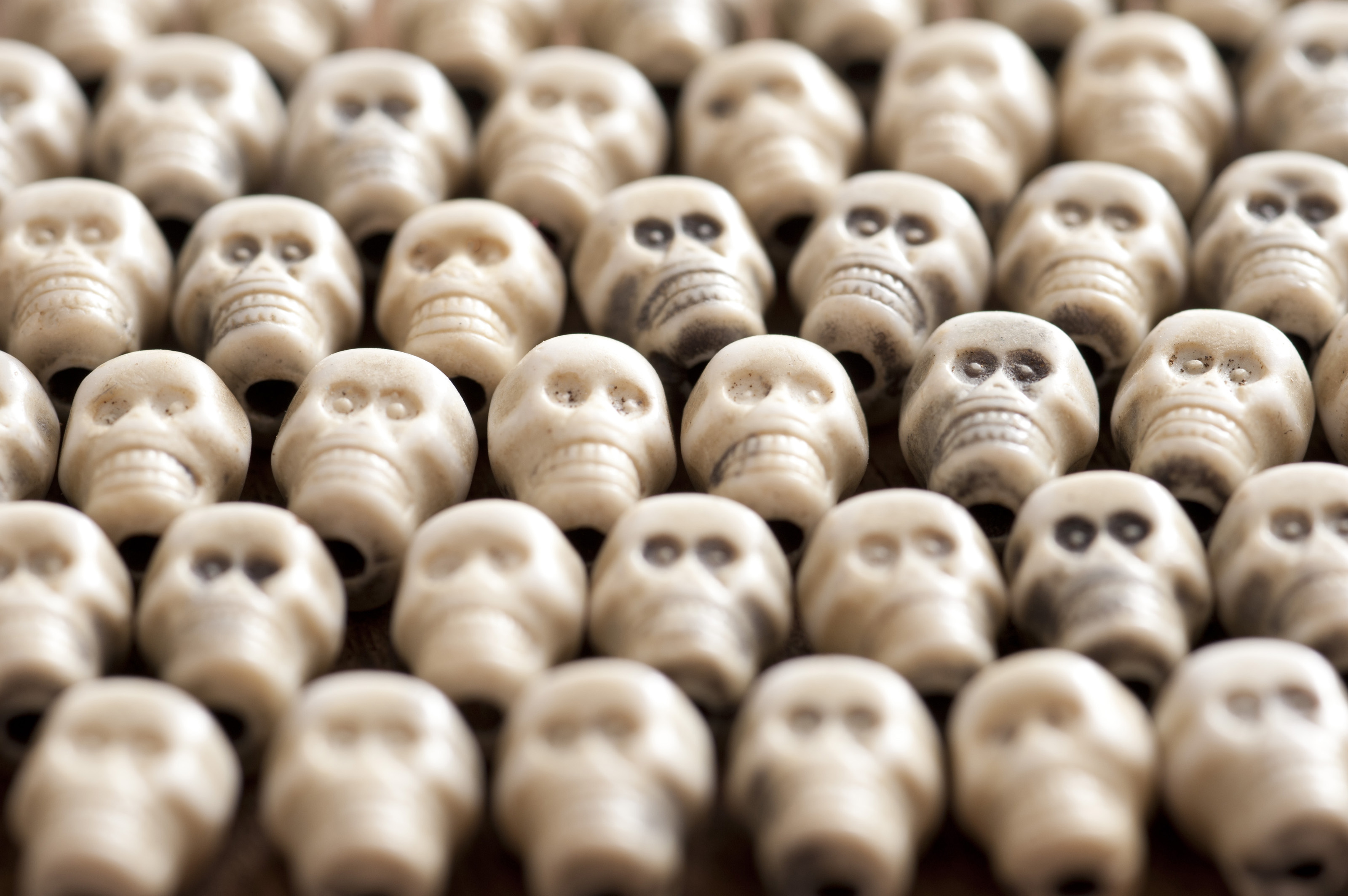Carefully arranged lines of little plastic human like skulls. Center row in focus.