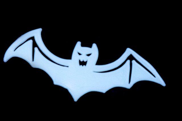 Image of bat shape creepyhalloweenimages - Breathtaking image of halloween decoration using bat pumpkin carving stencil ...