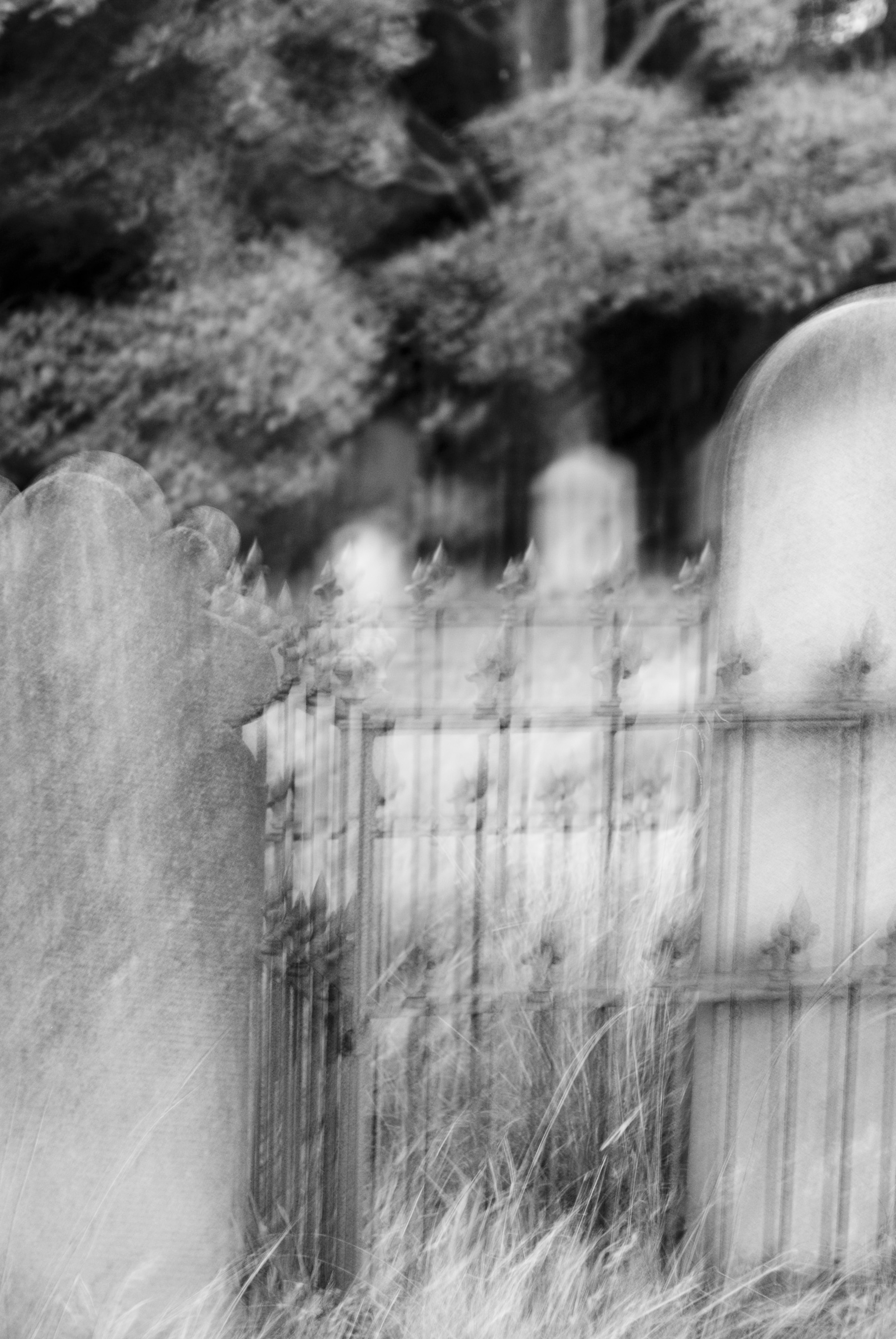blurred image of headstones