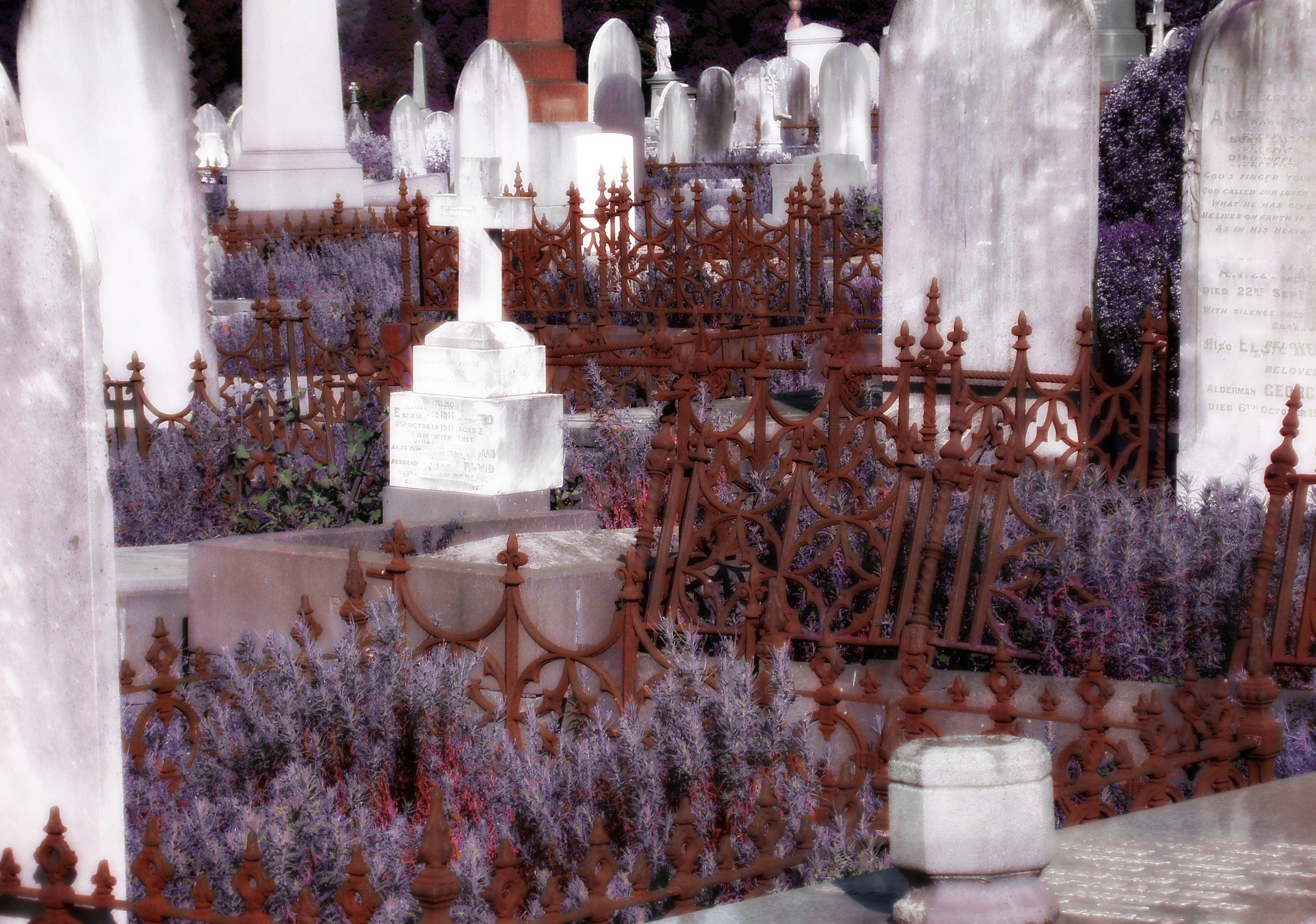 rusty cast iron railings, ethereal misty looking headstones and graves