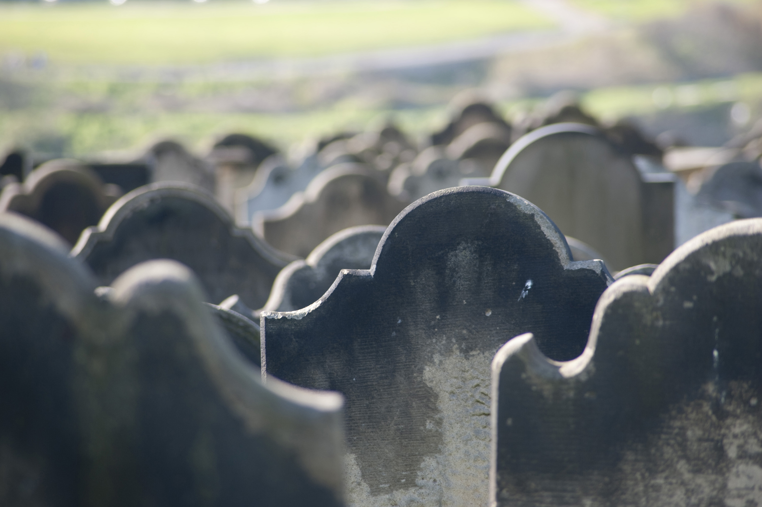 rows of grave headstones in a grave yard pictured with a narrow depth of field