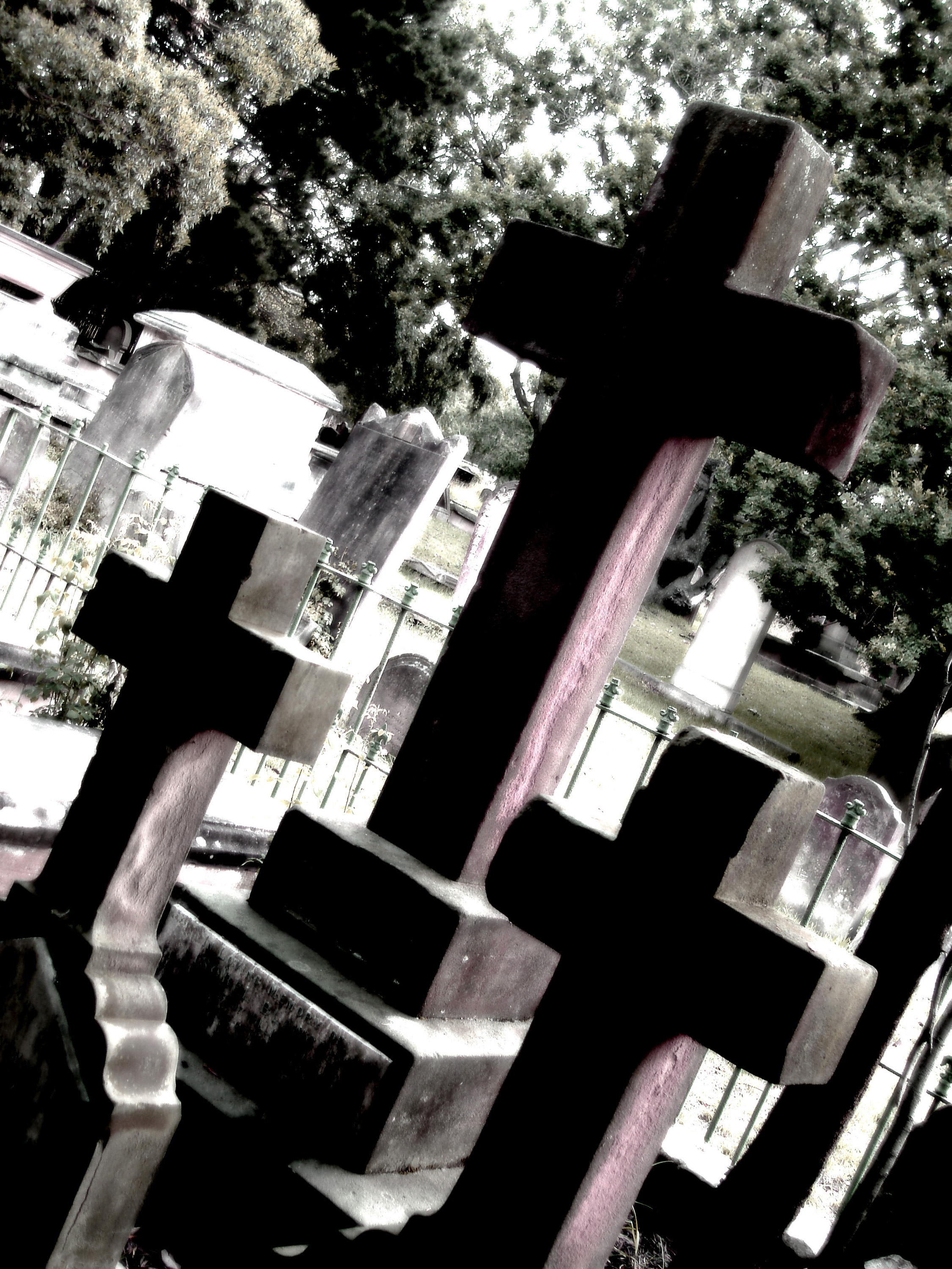high contrst image of a group of three cruciform headstones