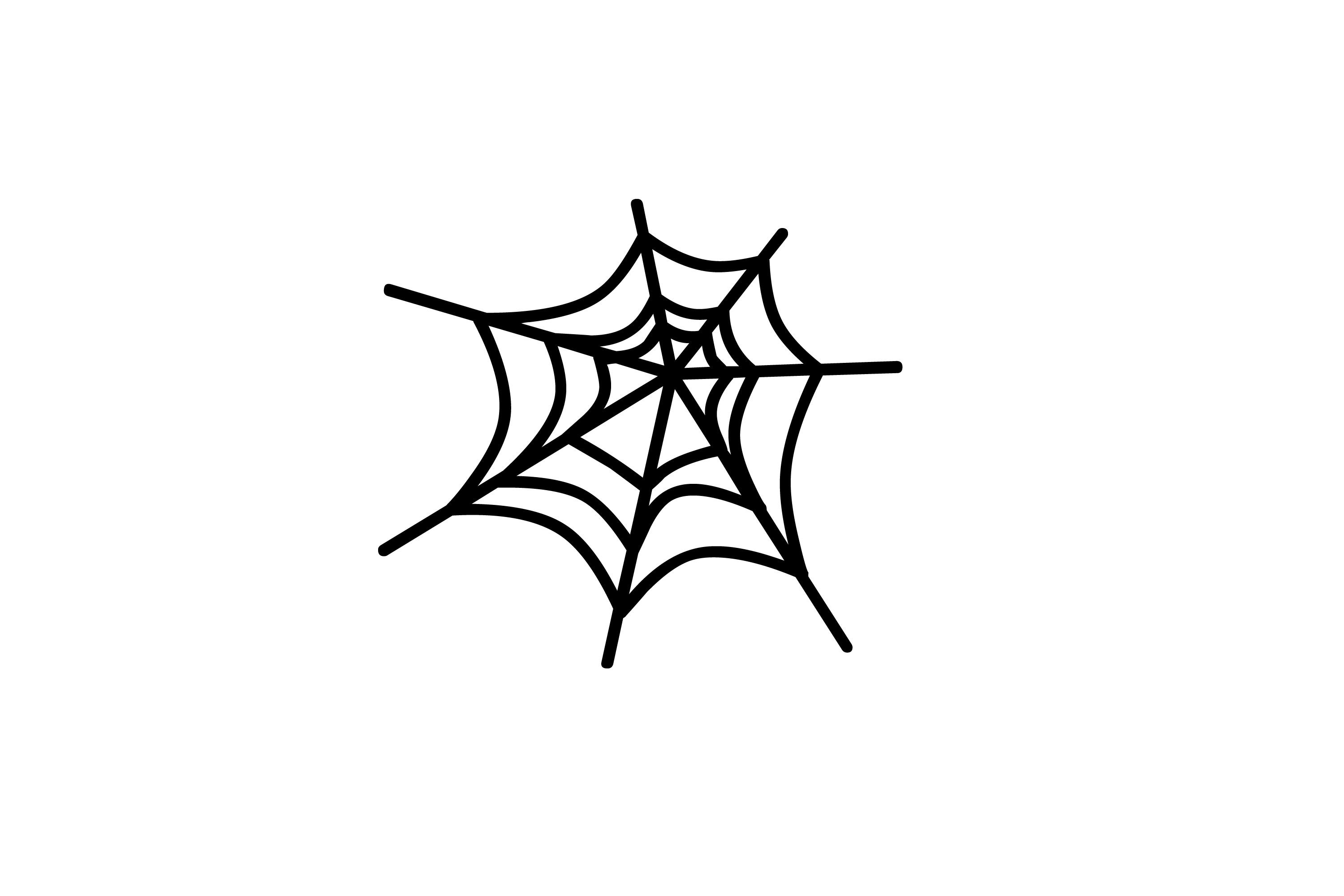 image of spiders web creepyhalloweenimages cobweb spider clipart Skull Clip Art