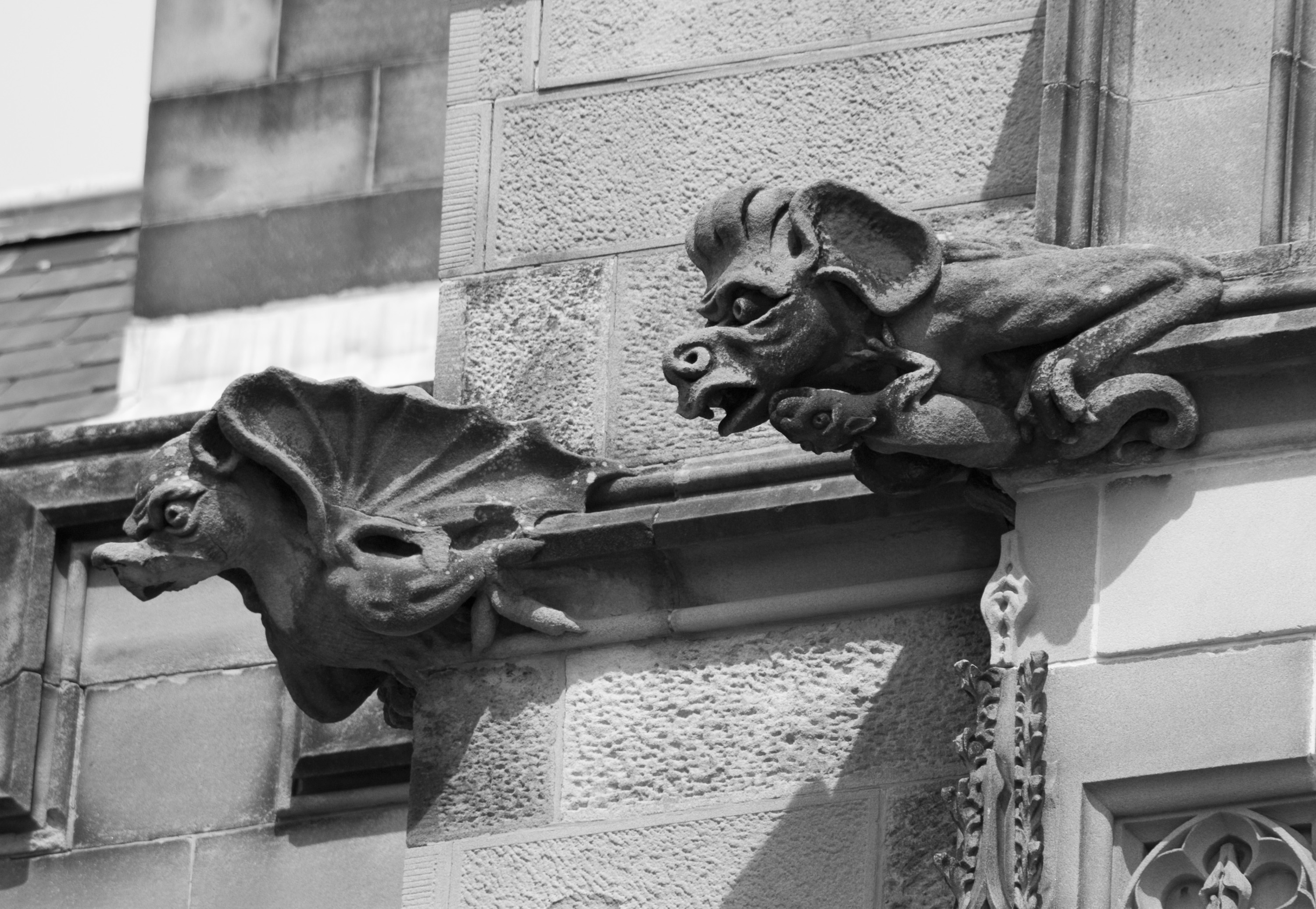 grotesque stone chimera decorations in black and white