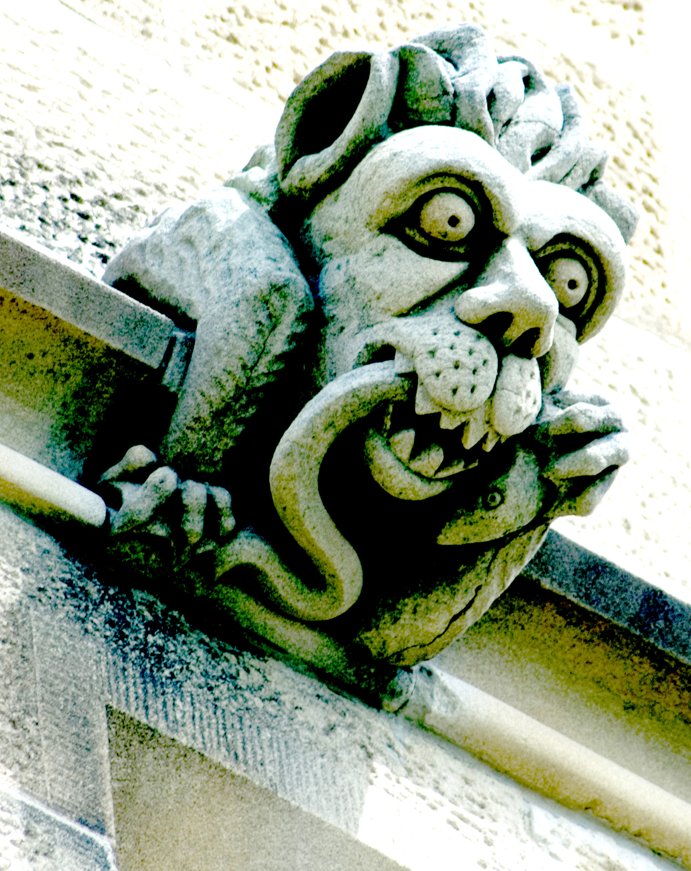 grotesque stone decoration eating a snake