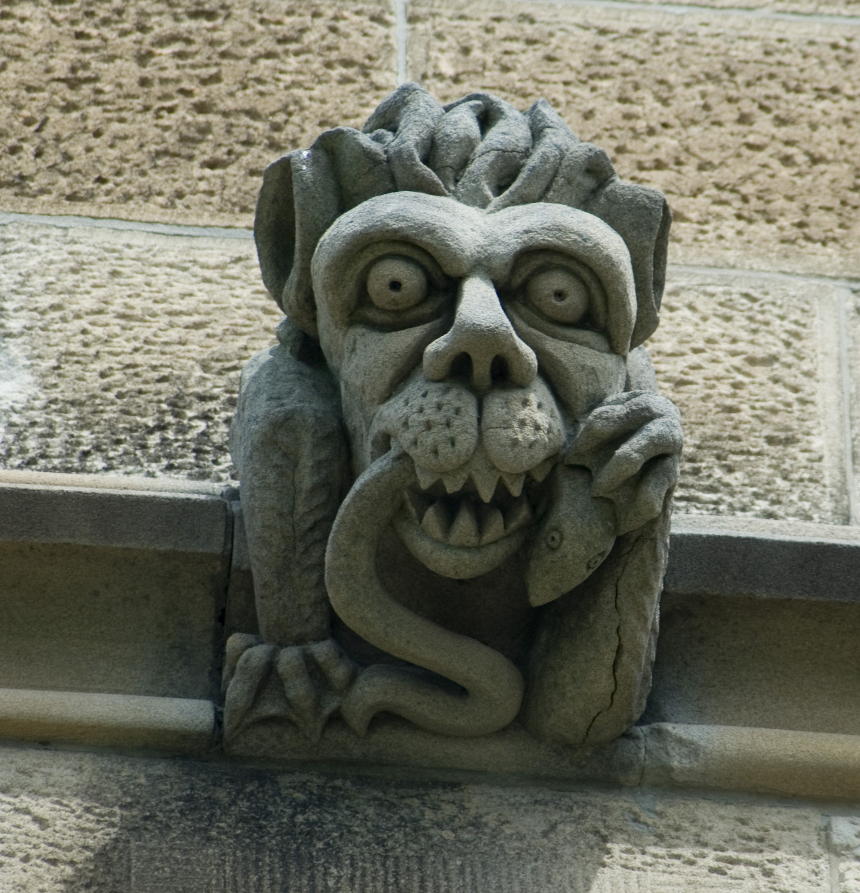 carved stone chimera or grotesque juting out from a wall