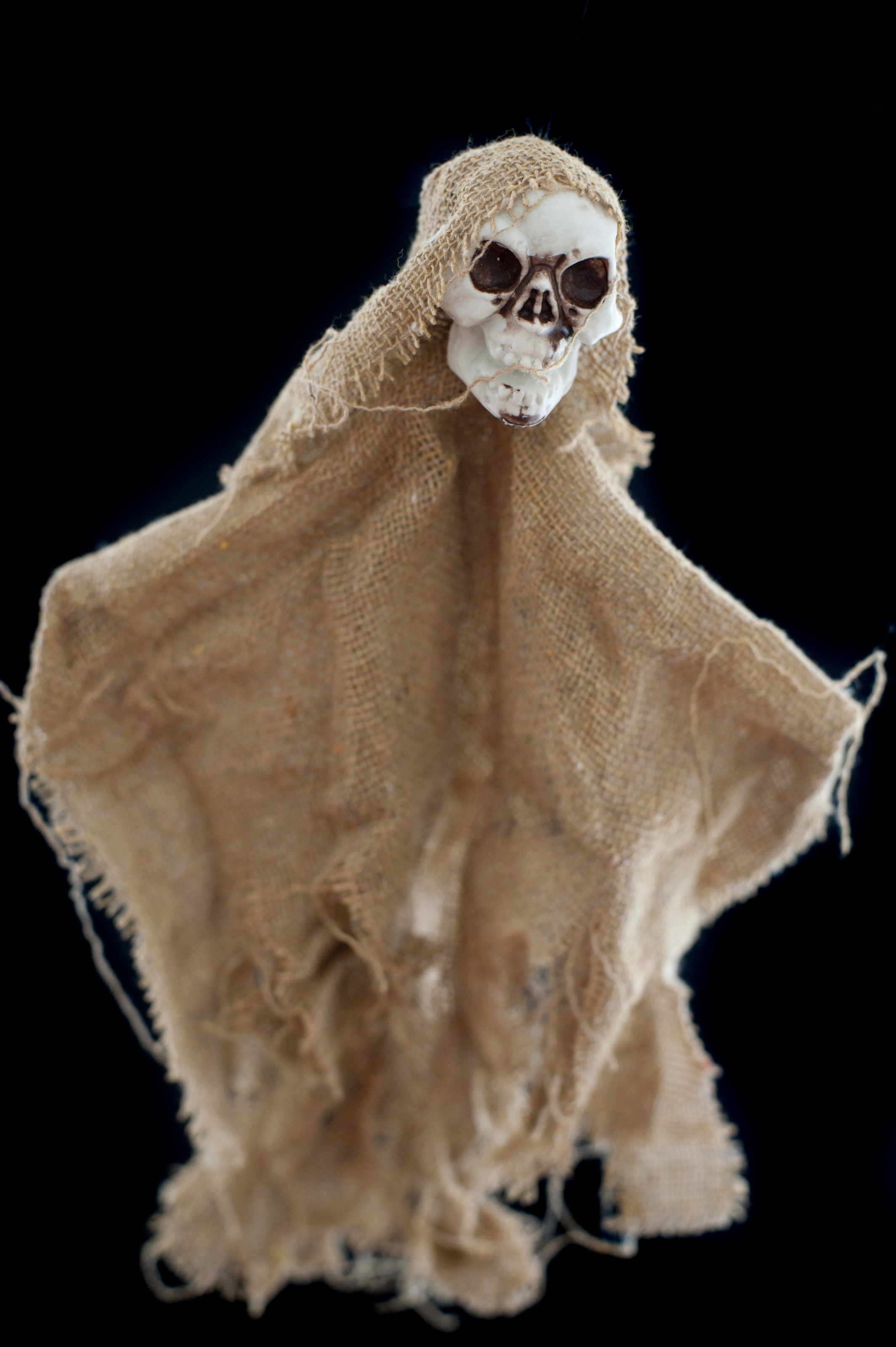 Spooky Halloween skull decoration draped in torn hessian or burlap with deep eye sockets on a black background for horror themed concepts