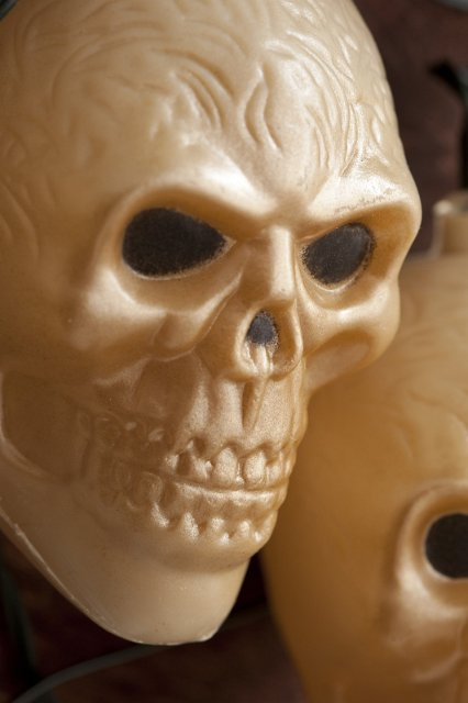 Image of Close up of scary plastic skull decoration CreepyHalloweenImages