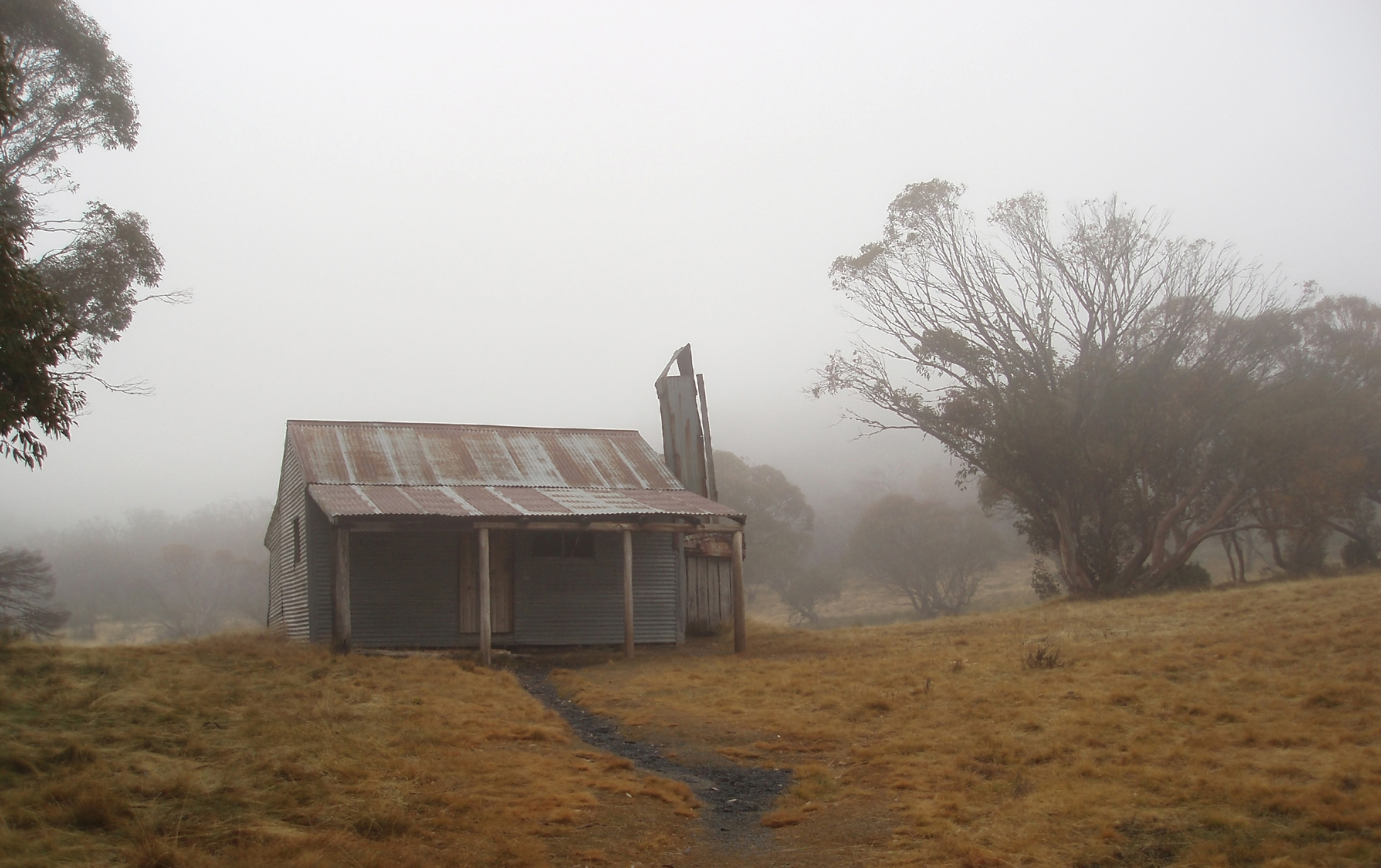 haunted looking old hut in the mist