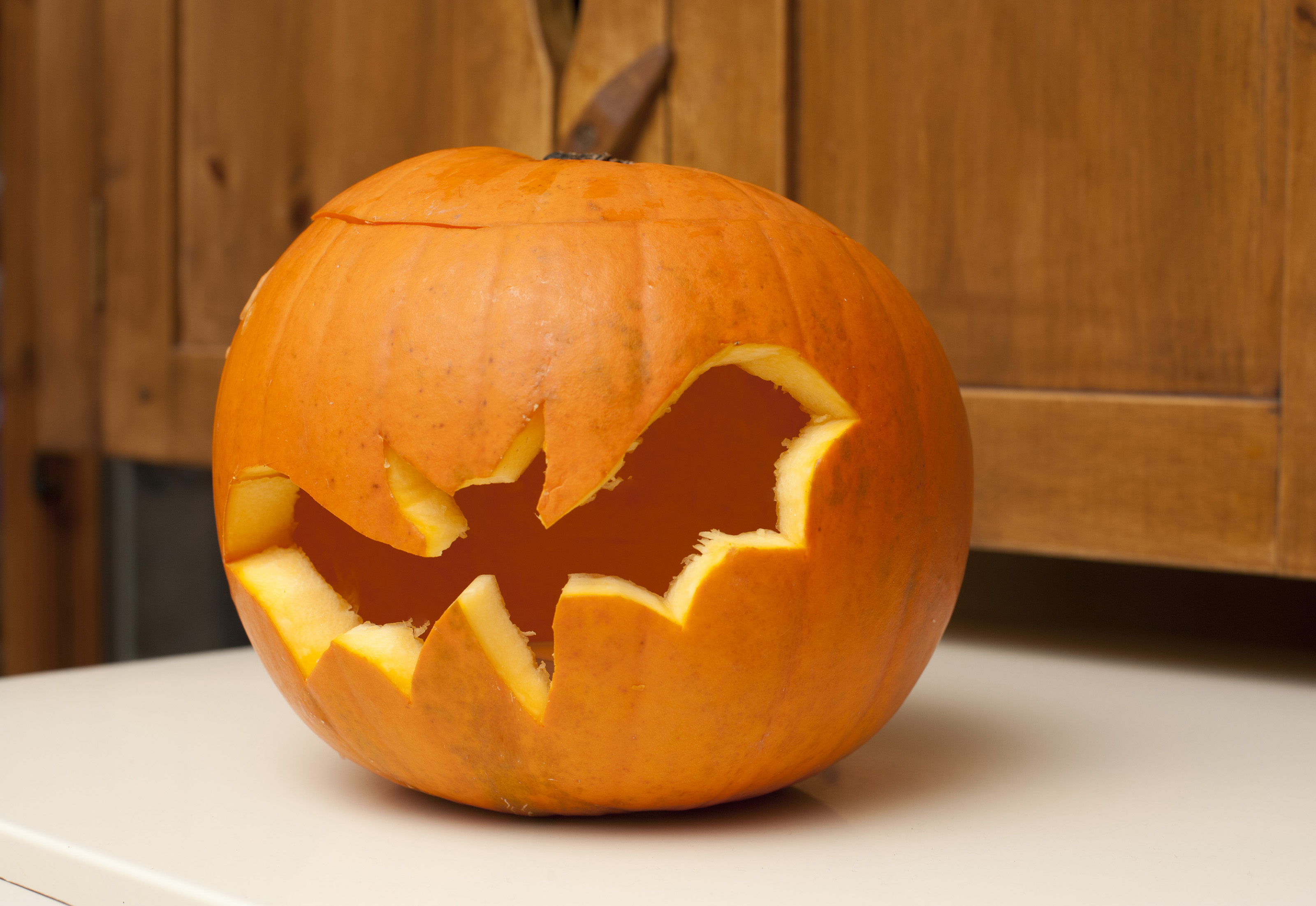 Image of Jack-o-lantern Halloween pumpkin with a bat ...